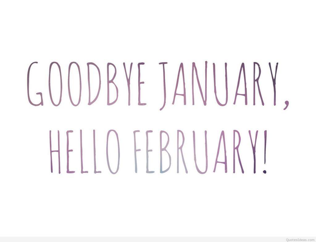 Mein Monatsrückblick – Januar